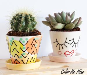 Provo Cute Planters